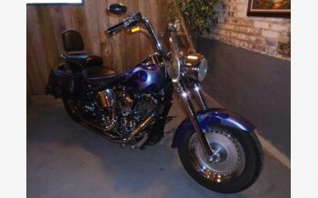 2002 Harley-Davidson Softail Fat Boy for sale 200478571