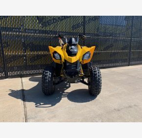 2019 Can-Am DS 250 for sale 200610775