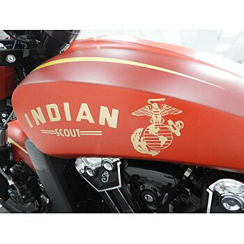 2019 Indian Scout for sale 200629054
