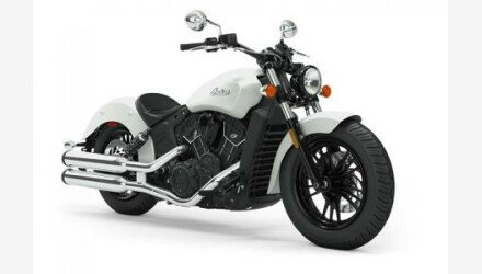 2019 Indian Scout for sale 200629434