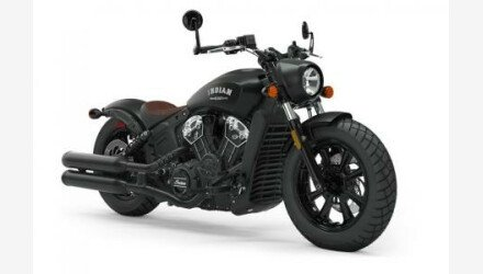 2019 Indian Scout for sale 200630986
