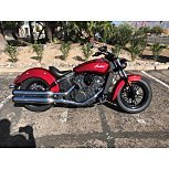 2019 Indian Scout for sale 200662252