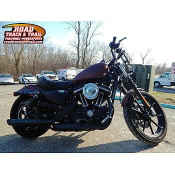 2017 Harley-Davidson Sportster for sale 200668126