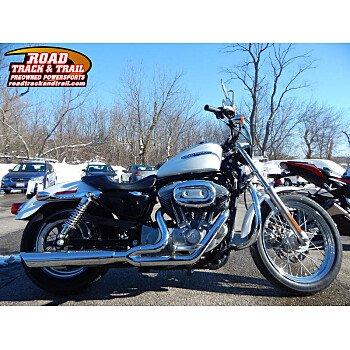 2006 Harley-Davidson Sportster for sale 200700022