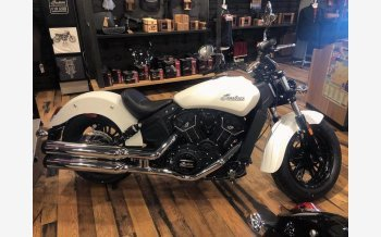 2019 Indian Scout for sale 200701853