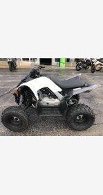 2019 Yamaha Raptor 90 for sale 200708212
