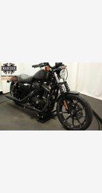 2019 Harley-Davidson Sportster Iron 883 for sale 200720493