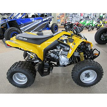 2019 Can-Am DS 250 for sale 200722445
