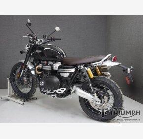2019 Triumph Scrambler for sale 200727280