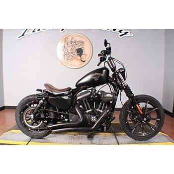 2017 Harley-Davidson Sportster Iron 883 for sale 200727413