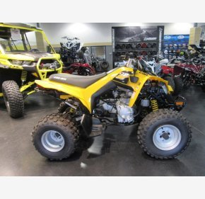 2019 Can-Am DS 250 for sale 200734429