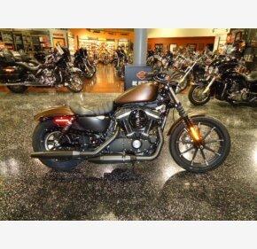 2019 Harley-Davidson Sportster Iron 883 for sale 200738340
