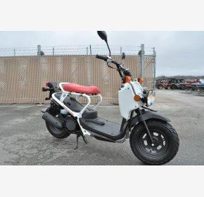 2019 Honda Ruckus for sale 200740107