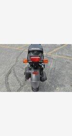 2019 Honda Ruckus for sale 200740109