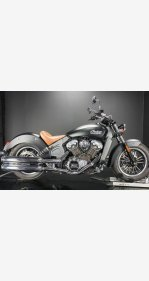 2017 Indian Scout for sale 200742883