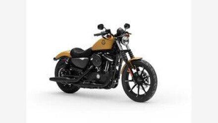 2019 Harley-Davidson Sportster Iron 883 for sale 200743119