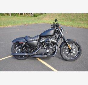 2019 Harley-Davidson Sportster for sale 200746203