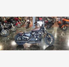 2019 Harley-Davidson Sportster for sale 200759480