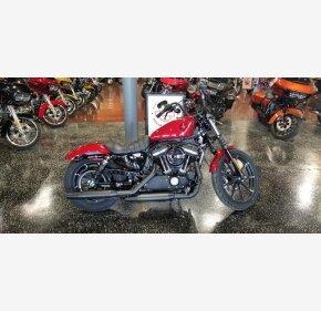 2019 Harley-Davidson Sportster for sale 200759492