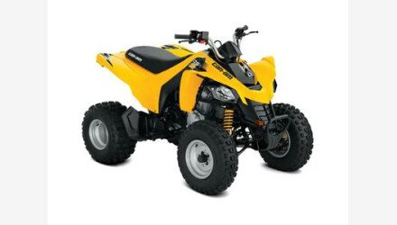 2019 Can-Am DS 250 for sale 200772378